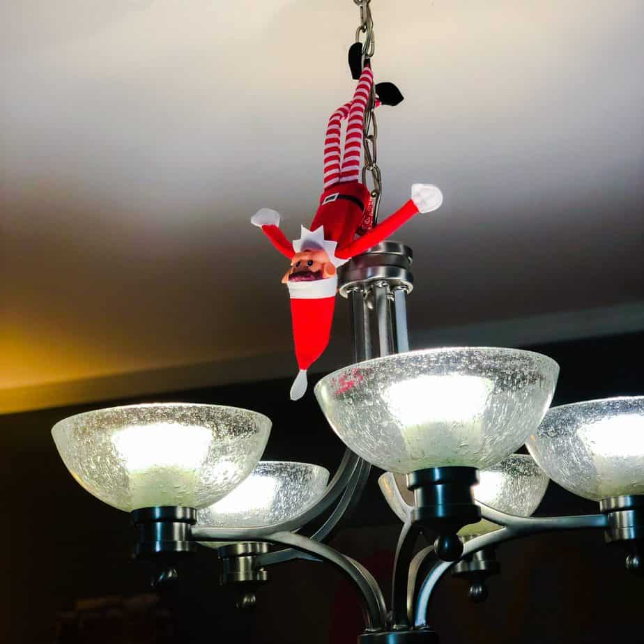Elf hanging from dining room light